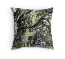 Floral City, Florida ~ View 2 Throw Pillow