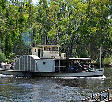 Adelaide on the Murray by Steven  Agius