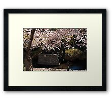 Blossom and Mill Wheel, Christchurch Framed Print