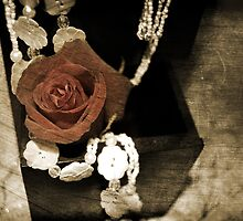 Little Black Box by Rozalia Toth