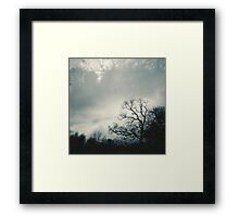 double exposed trees. Framed Print