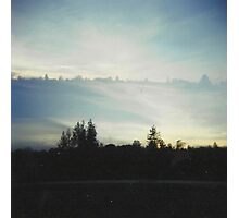 the forest meets the sky. Photographic Print