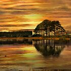 Sunset !! by Irene  Burdell