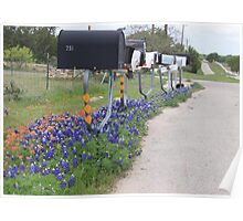 Bluebonnets, Indian Paintbrush and Mailboxes Poster