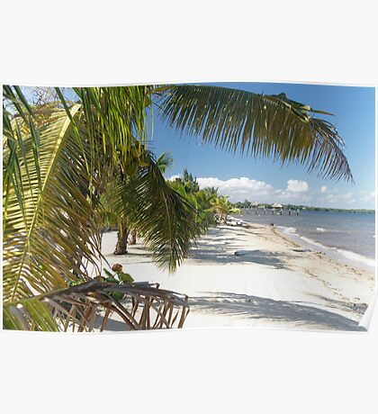 Coconut trees on a tropical beach Poster