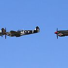 Flying legends by Chuckys72