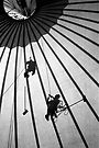 Big Top by docophoto