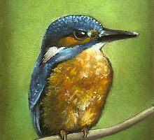Kingfisher by tanyabond
