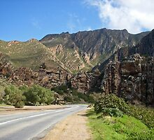 Tradouws Pass area, South Africa by Margaret  Hyde