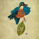 Indigo kingfisher's hope by stbiii0