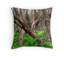 Capel Cemetery Grounds WesternAustralia Throw Pillow