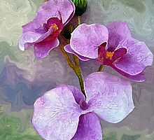 Purple Orchid by suzannem73