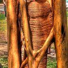 mummy by Daniel Rayfield