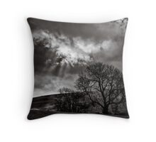 Rain storms follow spot Throw Pillow