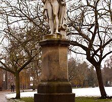 Nelson memorial, Norwich by Nicholas Jermy