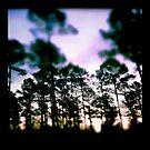 Arkansas Sunrise by Erin  Sadler