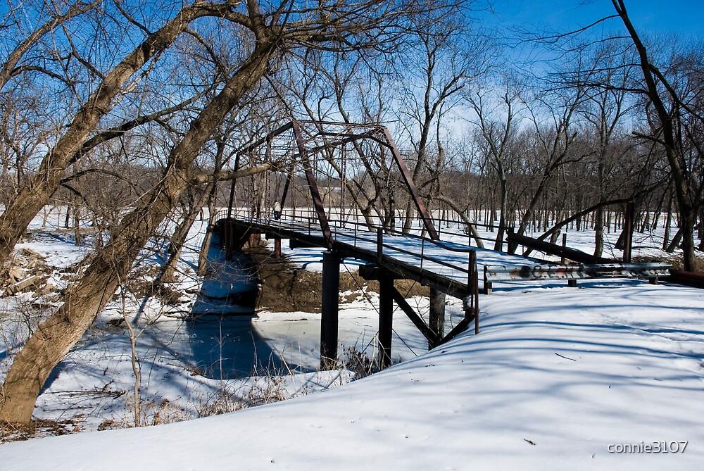 Ripson Bridge in Winter by connie3107