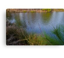 West Cary pond at sunset Canvas Print