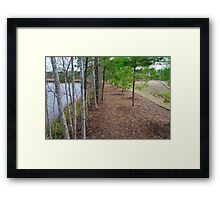 Fancy Cary Suburb landscape Framed Print