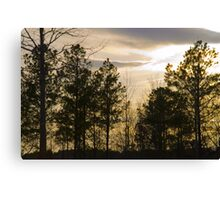 Friday Night Sunset at Cary in March Canvas Print