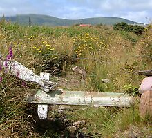 Improvisation - old gate in Dungegon by Yvonne North Moorhouse