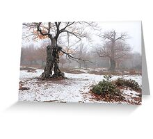 Ents of Fangorn Greeting Card