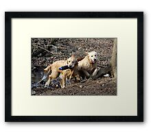 Dual Water Fetching - 11 Framed Print