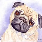 Daisy - An adorable little Pug by Anne Sainz