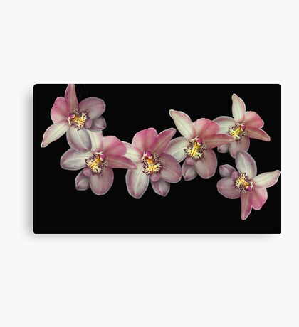 Flying Orchids Canvas Print