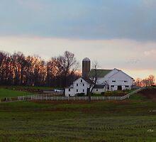 Amish Farm at Dusk by Gordon  Beck