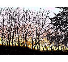 Nebraska Sunset Photographic Print