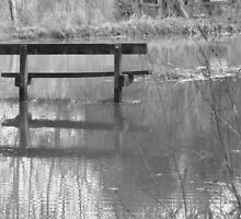 The Flood by Laura-Jane Shepherd