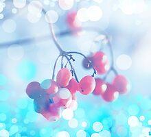 RedBerries by RosiLorz