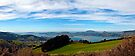 Otago Peninsula NZ panorama by Odille Esmonde-Morgan