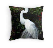 Great Egret in Breeding Plummage Throw Pillow