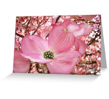 Tree Flowers Pink Dogwood Blossoms Spring Baslee Troutman Greeting Card