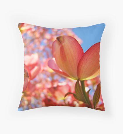 Sunlit Pink Dogwood Tree Flowers Spring Baslee Troutman Throw Pillow