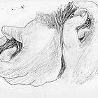 hands -(040311)- black biro pen/A4 sketchbook by paulramnora