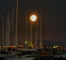 Moon, Masts & Melbourne by Larry Lingard/Davis