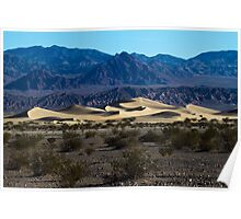 Moring at the Sand Dunes Poster