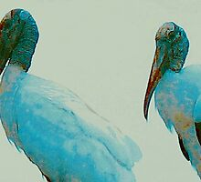 Wood storks on a rooftop by ♥⊱ B. Randi Bailey