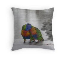 Parrots on Hamilton Island Throw Pillow