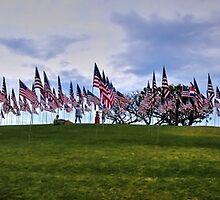 911 Memorial Flags by Stephen Burke