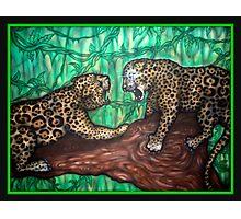 leopard fight Photographic Print