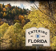 Not my Father's Florida by Owed To Nature