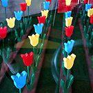 """Wooden Tulip Display""  Artist's Cafe Window Installation by waddleudo"