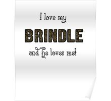 I Love My Brindle Poster