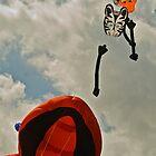 Kite Festival, Muizenberg by Daniel Mulcahy