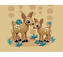 Little Deer Photographic Print