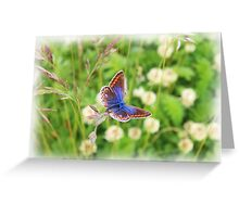 Common Blue! Greeting Card